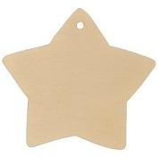 Star Gift Tag 7.6cm - 1.9cm -Bag of 1