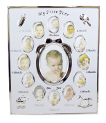 Pearhead My First Year Monthly Baby Photo Frame in Silver-tone