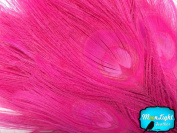 Moonlight Feather , Peacock Feathers ; Hot Pink Coloured Peacock Feathers; Dyed Pink, 5 Pieces Per Pack