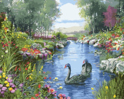 DIY Paint By Number Kits Canvas Painting - Swan Lake