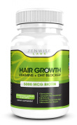 Hair Growth Vitamins Supplement with 5000mcg of Biotin & DHT Blocking Ingredients - Packed with Essential Vitamins and Antioxidants that Address Deficiencies Shown to Cause Hair Loss and Baldness - 60 Vegetarian-Friendly Pills to Help Boost Hair Growth ..