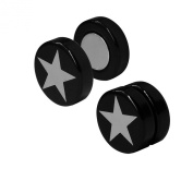 1 pair of magnetic Fake Plug Black with Silver Star expander