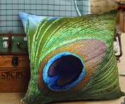 Luk Oil Attractive Appearance Elegant Ornate Decorative Soft Velvet Fabric Throw Pillow Case Peacock Feathers Design on Both Sides 50cm by 50cm
