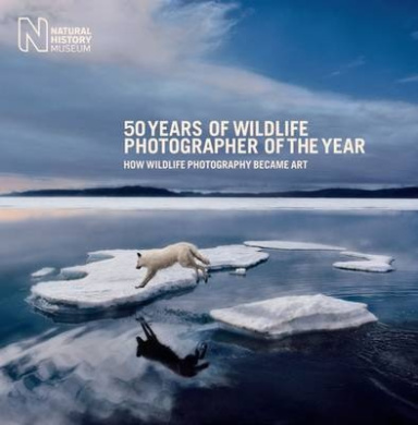 50 Years of Wildlife Photographer of the Year: How Wildlife Photography Became Art