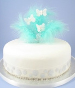 Aqua Feather Cake Top with Butterflies & Gems