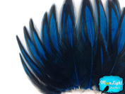 Hen Feathers, Laced Hen - Blue Laced Hen Cape Feather - 1 Dozen Feathers