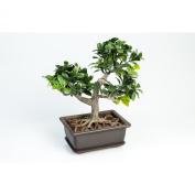 "Artificial Bonsai Boxwood in planter, 8"" / 20 cm - Plastic buxus / Silk bonsai - artplants"
