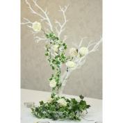 White Manzanita Tree (76cm)