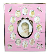 Pearhead My First Year Monthly Baby Girl Photo Silver Metal Frame