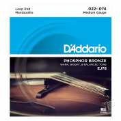 D'Addario J78 Phosphor Bronze Mandocello Strings, 22-74