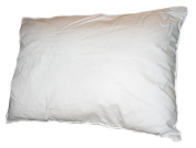 12 X 16 Toddler Pillow, Machine Washable Non-allergenic, Paediatrician Recommended, Made in USA!