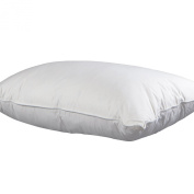 Allied Essentials Down and Feather Compartment Pillow, Standard