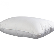 Allied Essentials Down and Feather Compartment Pillow, King
