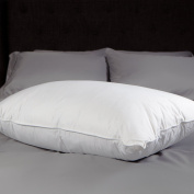 Allied Essentials Down and Feather Compartment Pillow, Queen