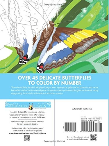 Colouring Books Buy Online From Fishpondau