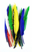 Touch of Nature 38182 25-Piece Indian Feather, 10 to 30cm , Assorted