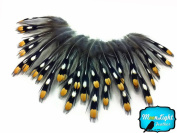 Moonlight Feather, Loose Feathers - Natural Gold Jungle Cock Small Eye Loose Feathers - 10 Pieces