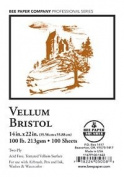 Bee Paper Vellum Bristol Pack, 60cm by 70cm , 100 Sheets per Pack