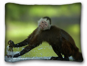 Decorative Standard Pillow Case Animals Capuchin monkey crane spray 50cm *70cm One Side