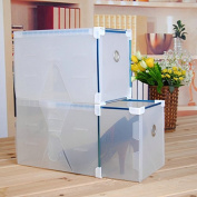 SwirlColor 2 PCS of Clear Plastic High-heeled Shoe Boxes, Stackable Lady Shoe Storage