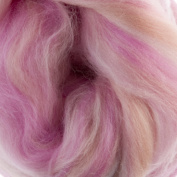 Extra Fine Merino Roving Sugar Candies 19 Micron Mademoiselle One Ounce