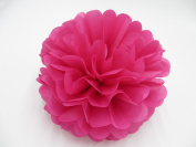 Saitec ® 12PCS Mixed Sizes Hot Pink Party Tissue Paper Flower Pom Poms Pompoms Wedding Birthday Bridal Shower Party Favour Decoration