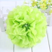 Worldoor® New Coming 12PCS Mixed Sizes Lime green Party Tissue Paper Flower Pom Poms Pompoms Wedding Birthday Bridal Shower Party Favour Decoration