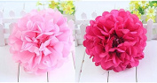 Worldoor® New Coming 12pcs Mixed 3 Sizes Pink Hot Pink Tissue Paper Pom Poms Flower Wedding Birthday Party Baby Girl Room Nursery Decoration