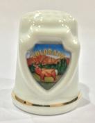 Colorado Souvenir Collectible Lpco Thimble