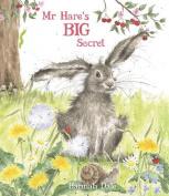 Mr Hare's Big Secret