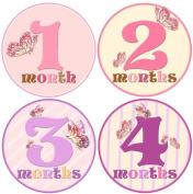 Mumsy Goose Baby Girl Monthly Milestone Stickers 1-12 Months
