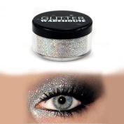 GlitterWarehouse Glitter Eyeshadow / Eye Shadow Shimmer Makeup Powder Diamond Silver
