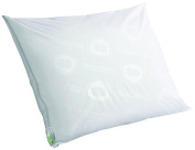 Clean Rest Pro Waterproof, Allergy and Bed Bug Blocking Pillow Encasement, Standard/Queen