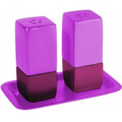 Anodized Aluminium Salt and Pepper Shakers with Matching Tray / Pink Shades