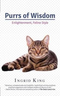 Purrs of Wisdom: Enlightenment, Feline Style