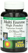 Natural Factors High Potency Multi Enzyme