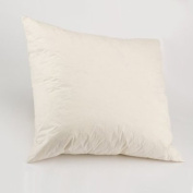 """Luxury 10"""" X 10"""" (25cm X 25cm) Duck Feather Cushion Pad/Inner - Free P & P With Extra Filled & 100% Cotton Casing Cushions"""