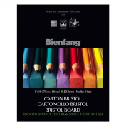 Bienfang Bristol 28cm by 36cm Paper Pad, Smooth Surface, 20 Sheets