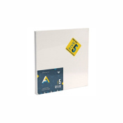 Aa Canvas Panel Super Value 12X12 Pack Of 5