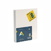 Aa Canvas Panel Super Value 8X10 Pack Of 8