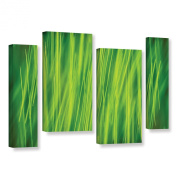 Cora Niele's Hordeum, 4 Piece Gallery-Wrapped Canvas Staggered Set 36X54