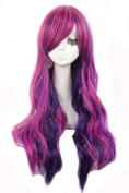 Nuoqi Women's Ombre Long Rainbow Synthetic Human Hairs Cosplay Wig