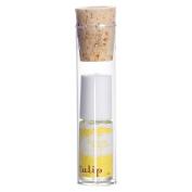 Women's Lemon Sugar by Tulip Eau de Parfum Roll On - 20ml