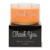Primal Elements Thank You Wish Candle, 280ml