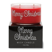 Primal Elements Merry Christimas Wish Candle, 280ml