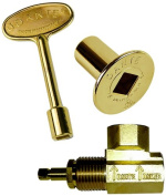 Dante Products Combo Pack with Angled 1.3cm Globe Valve, Polished Brass Floor Plate and 7.6cm Key