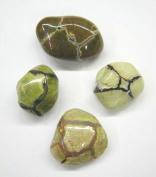 Amulet Stone aka Thunder Egg Tumble Stone 20-25mm