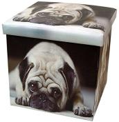Pug Folding Storage Box and Seat