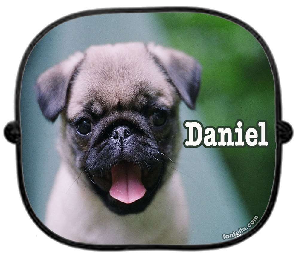 A Personalised Pug Dog Car Sunshade X 1 New Puppy Hound Cute