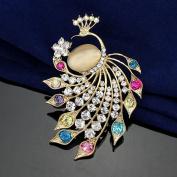Revenne Jewellery The 2015 New Fashion Cat's Eyes Peacock Brooch With Coloured Glaze R013